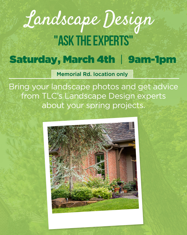 Landscaping Design Experts - Sat March 4th