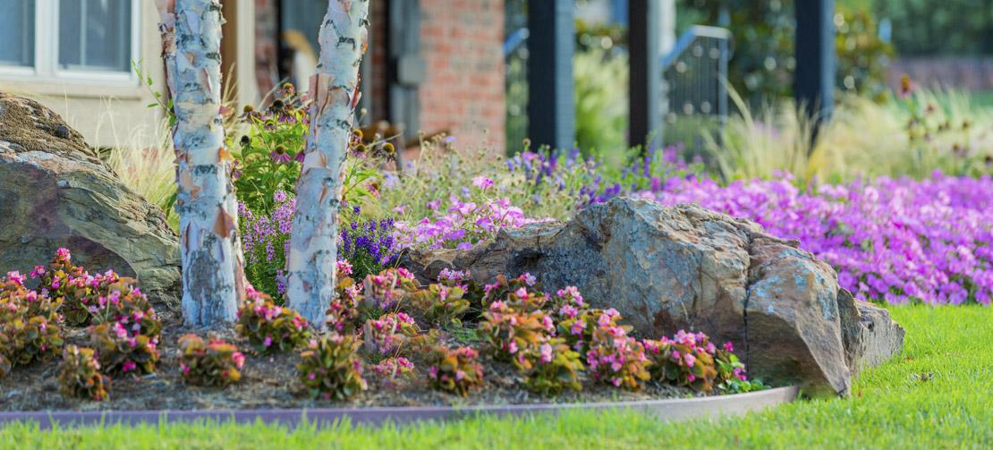 TLC Garden Landscape Design Services