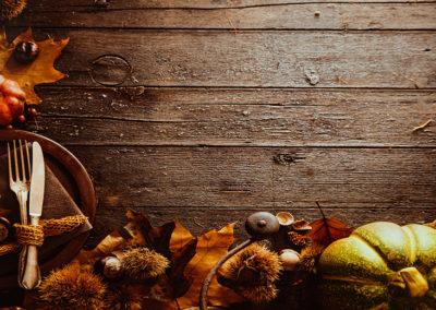 November Lawn & Garden Tips