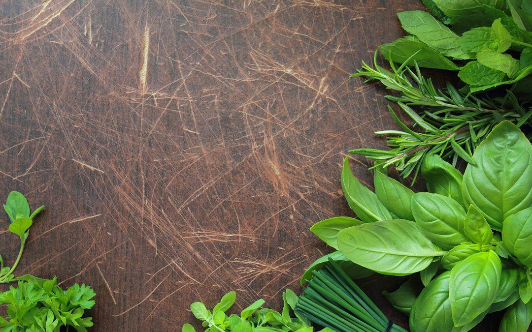 10 Easy Herbs