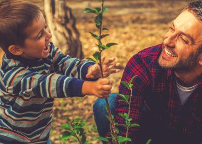 Planting Trees & Shrubs