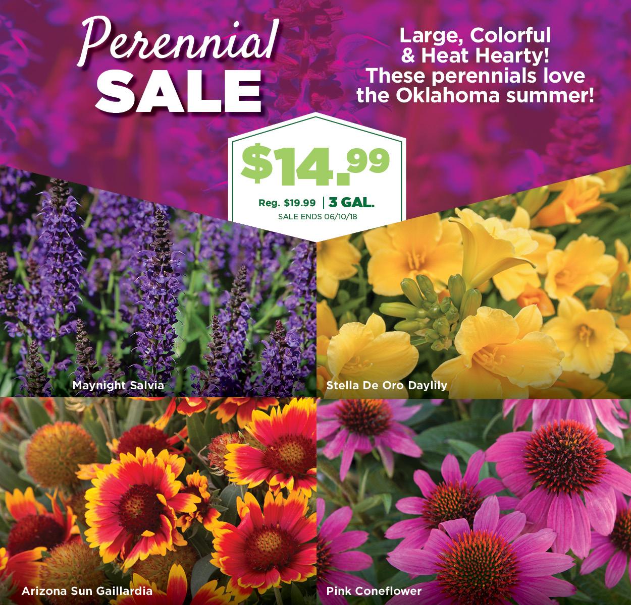 Perennial Sale