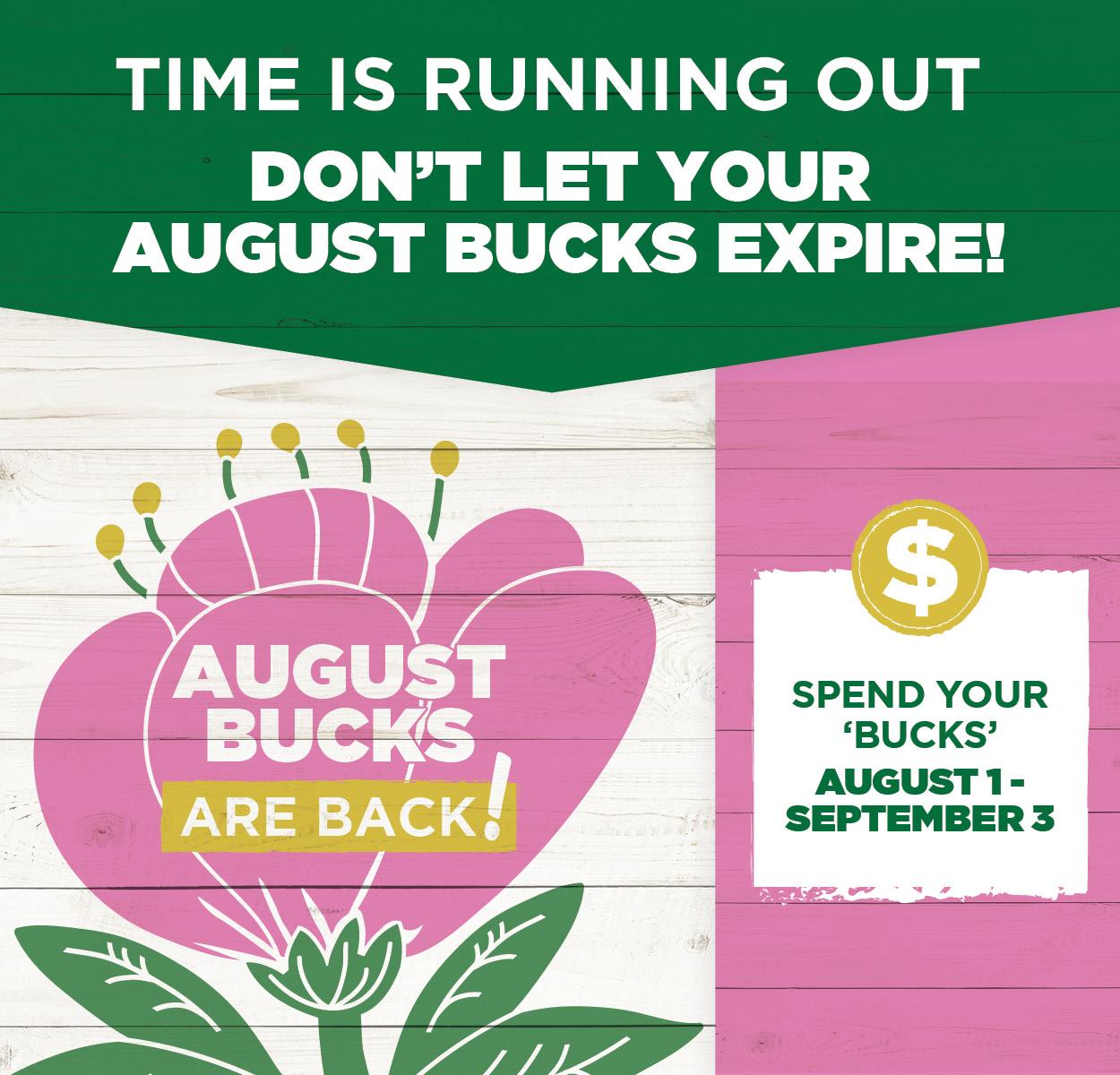 August Bucks