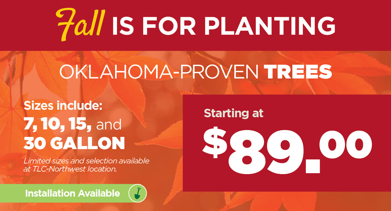 Fall is for Planting - Trees