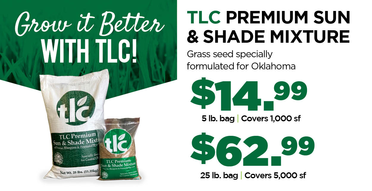TLC Sun & Shade