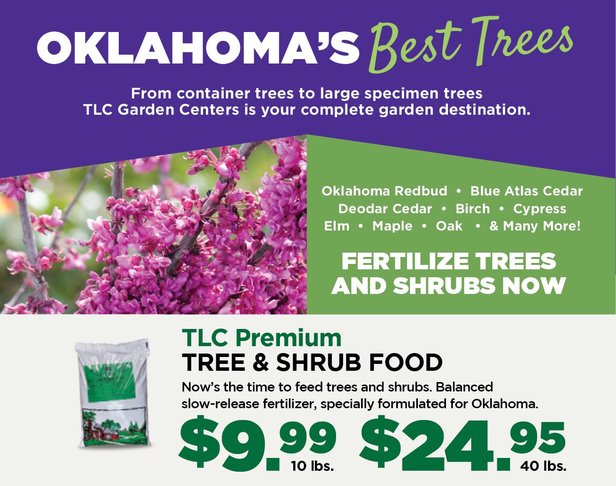 Oklahoma's Best Trees