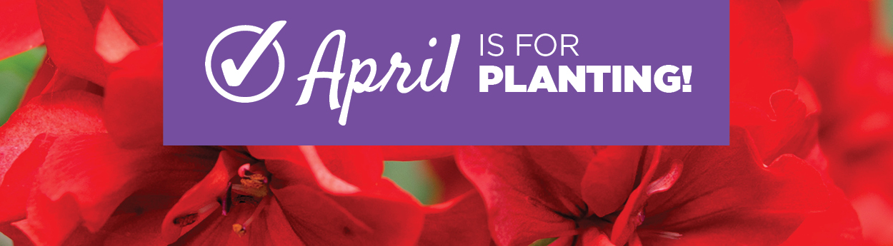 April Checklist