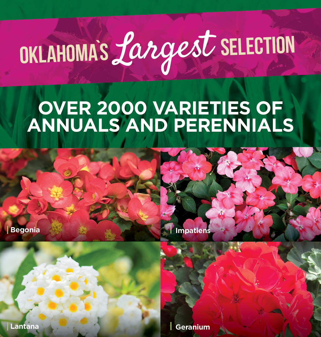 Oklahoma's Largest Selection
