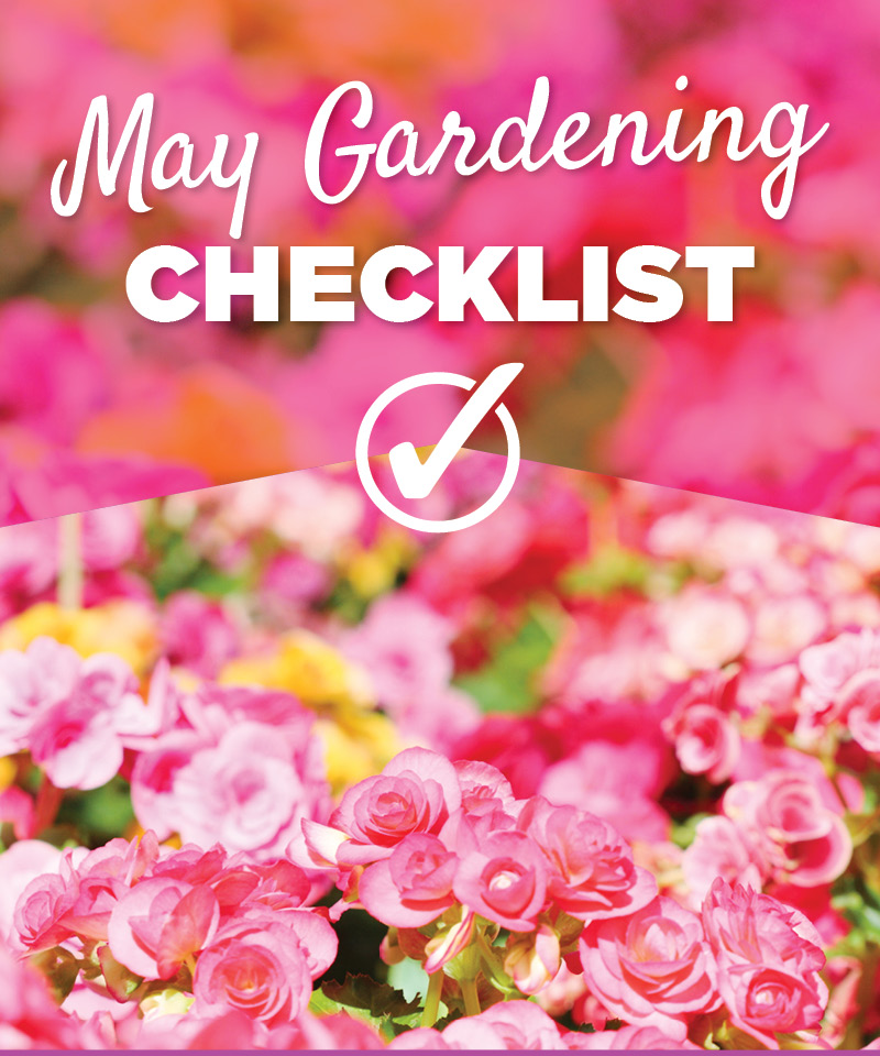 May Gardening Checklist | TLC Garden Centers