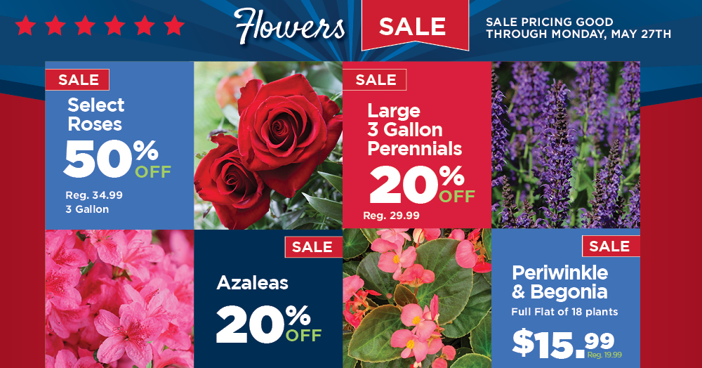 Memorial Day Sale - Flowers