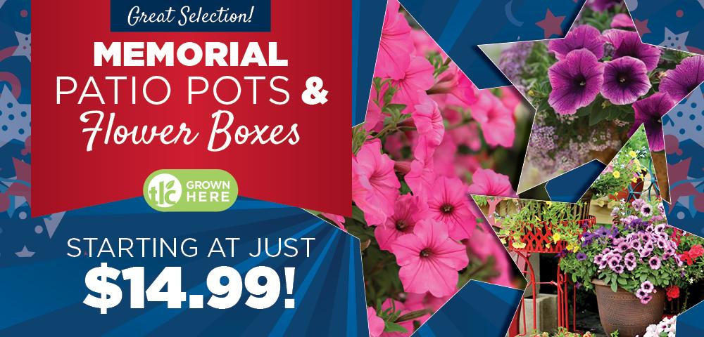 Memorial Patio Pots and Boxes