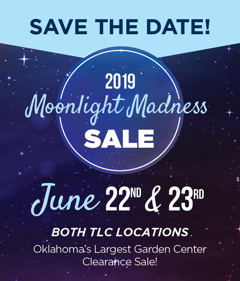 Moonlight Madness 2019 | TLC