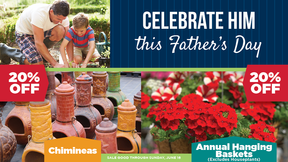 Father's Day | TLC Garden Centers