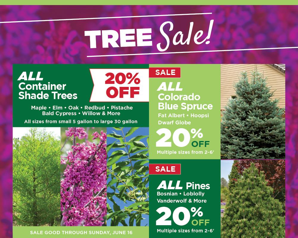 Tree Sale | TLC Garden Centers
