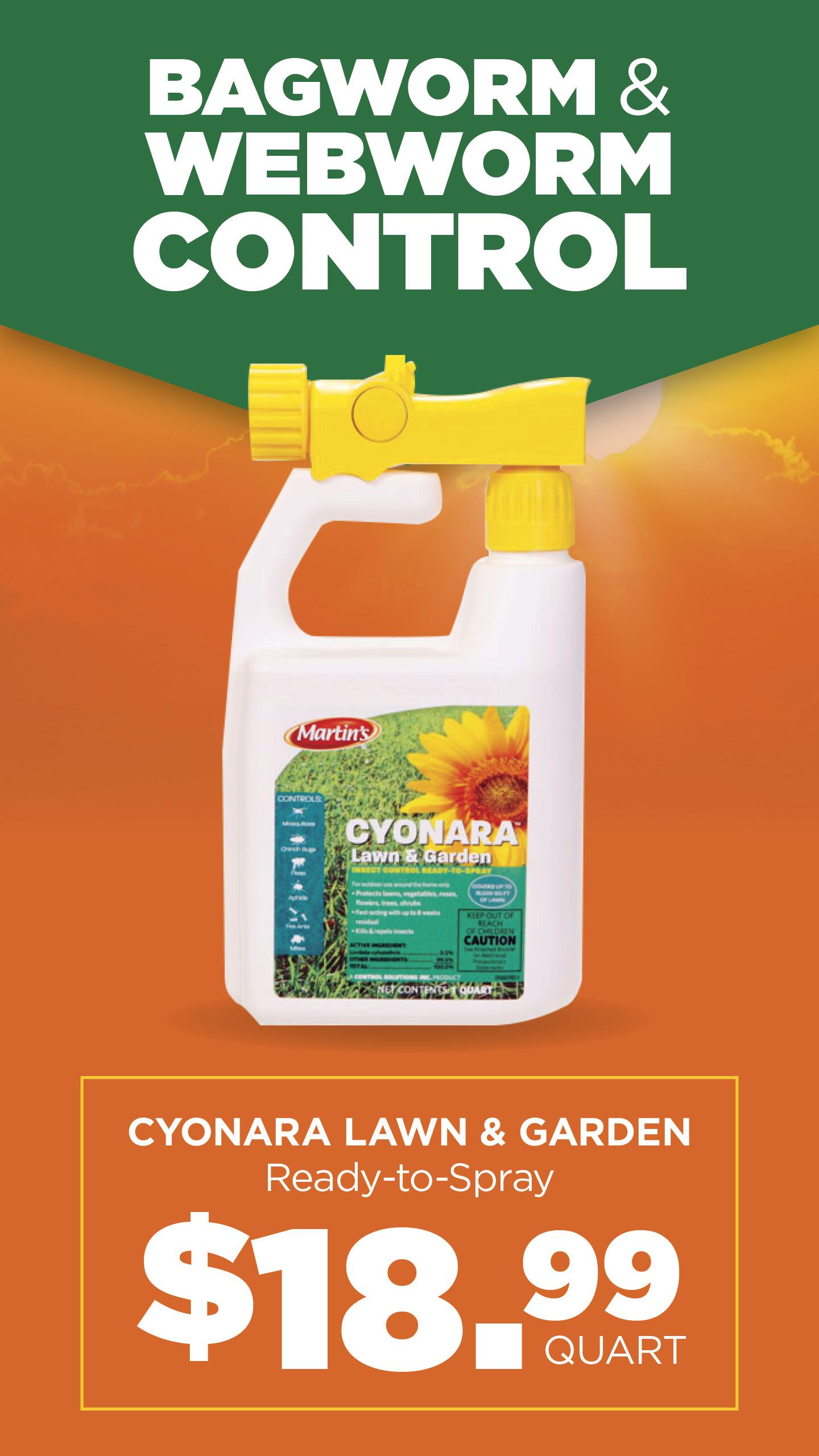 Cyonara | TLC Garden Centers