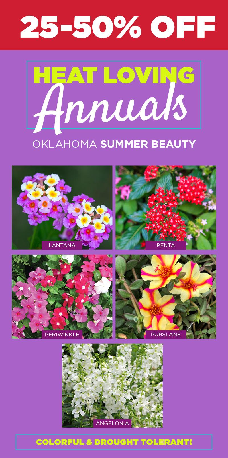 Annuals Sale | TLC Garden Centers