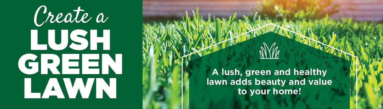 Lush Green Lawn | TLC Garden Centers