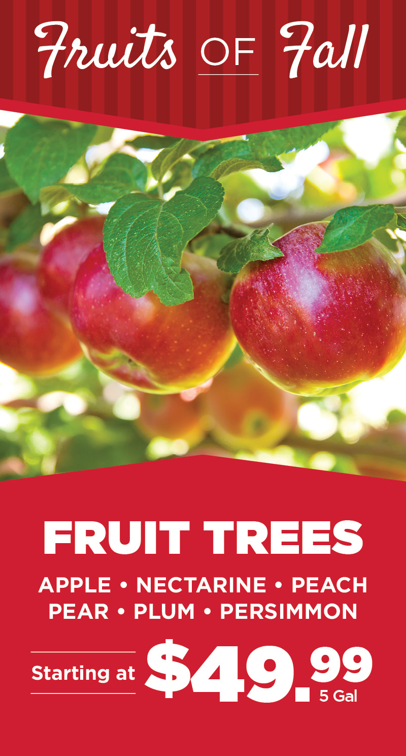 Fruit Trees | TLC Garden Center