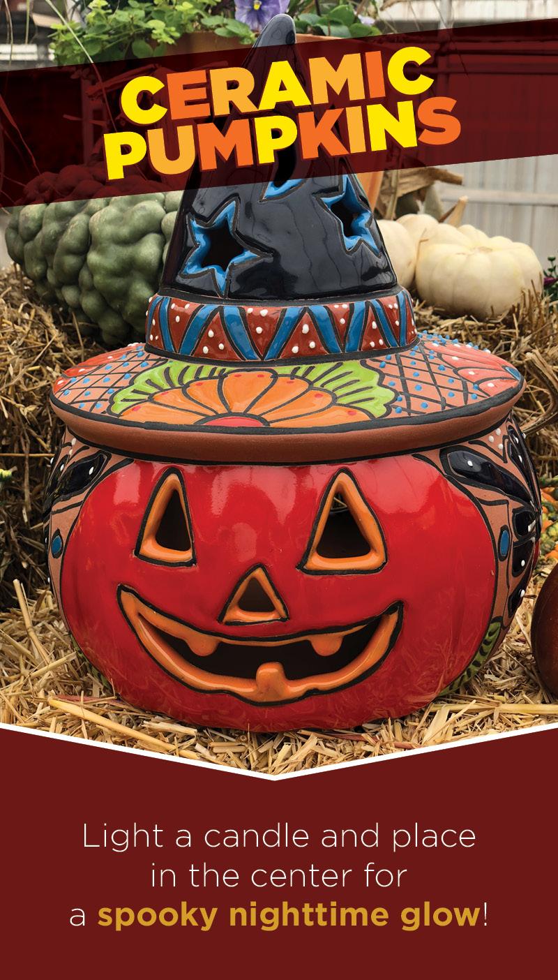Ceramic Pumpkins | TLC Garden Center