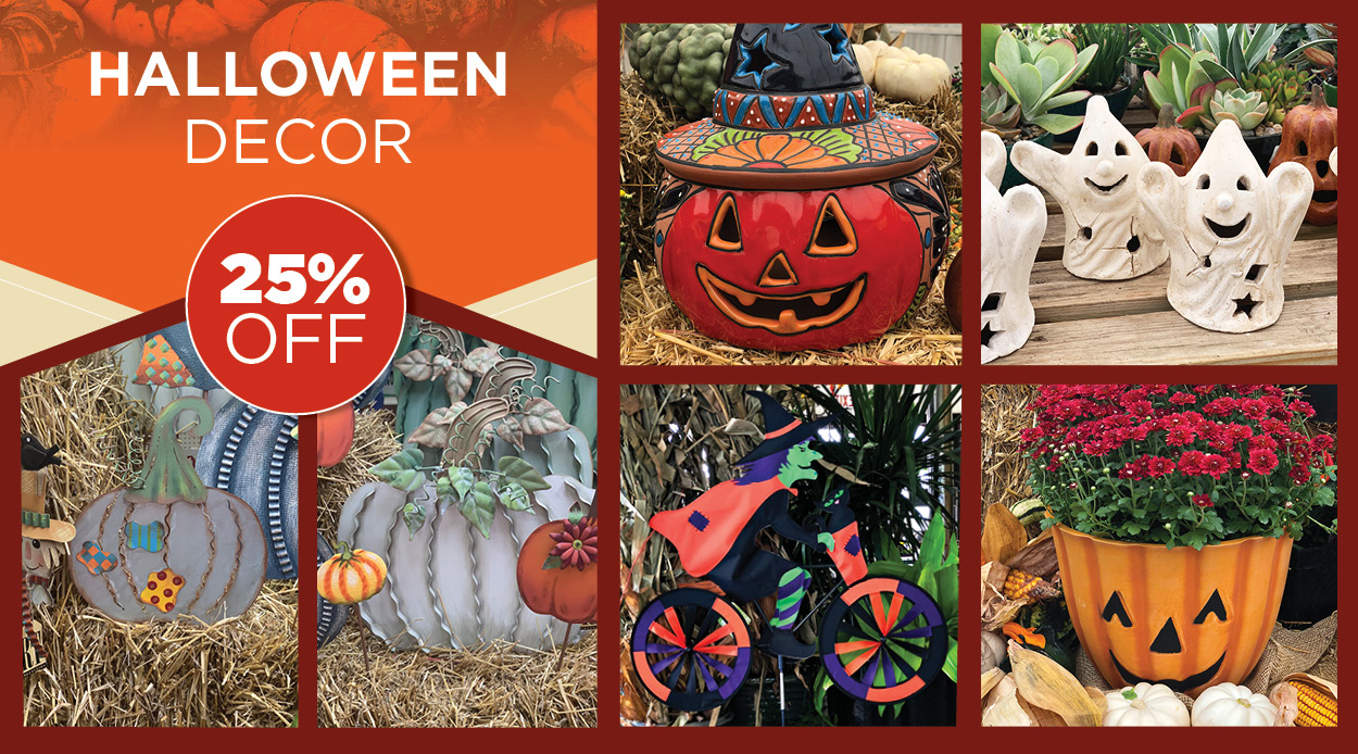 Halloween Decor Sale | TLC Garden Centers