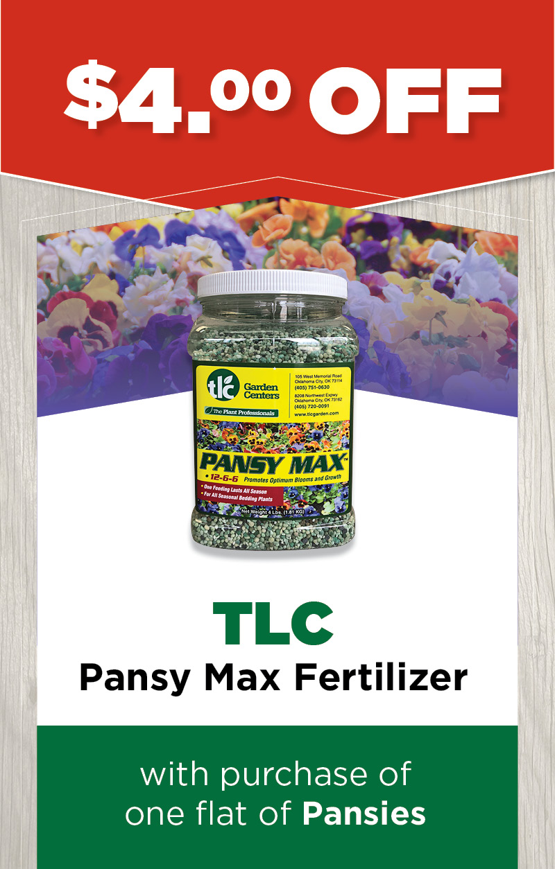 TLC Pansy Max Fertilizer | Sale at TLC
