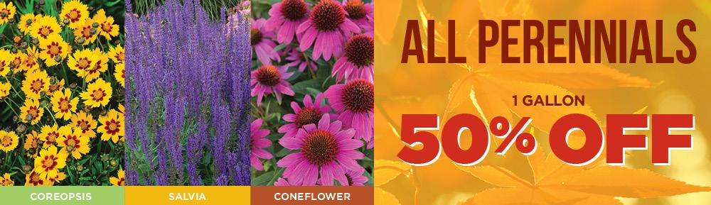 Perennials Half Off | TLC Garden Centers