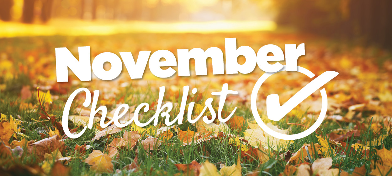 TLC Garden Centers | November Checklist