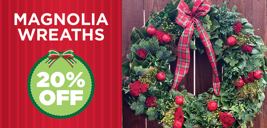 Magnolia Wreaths | TLC Garden Center