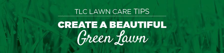 Lawn Tips | TLC Garden Centers