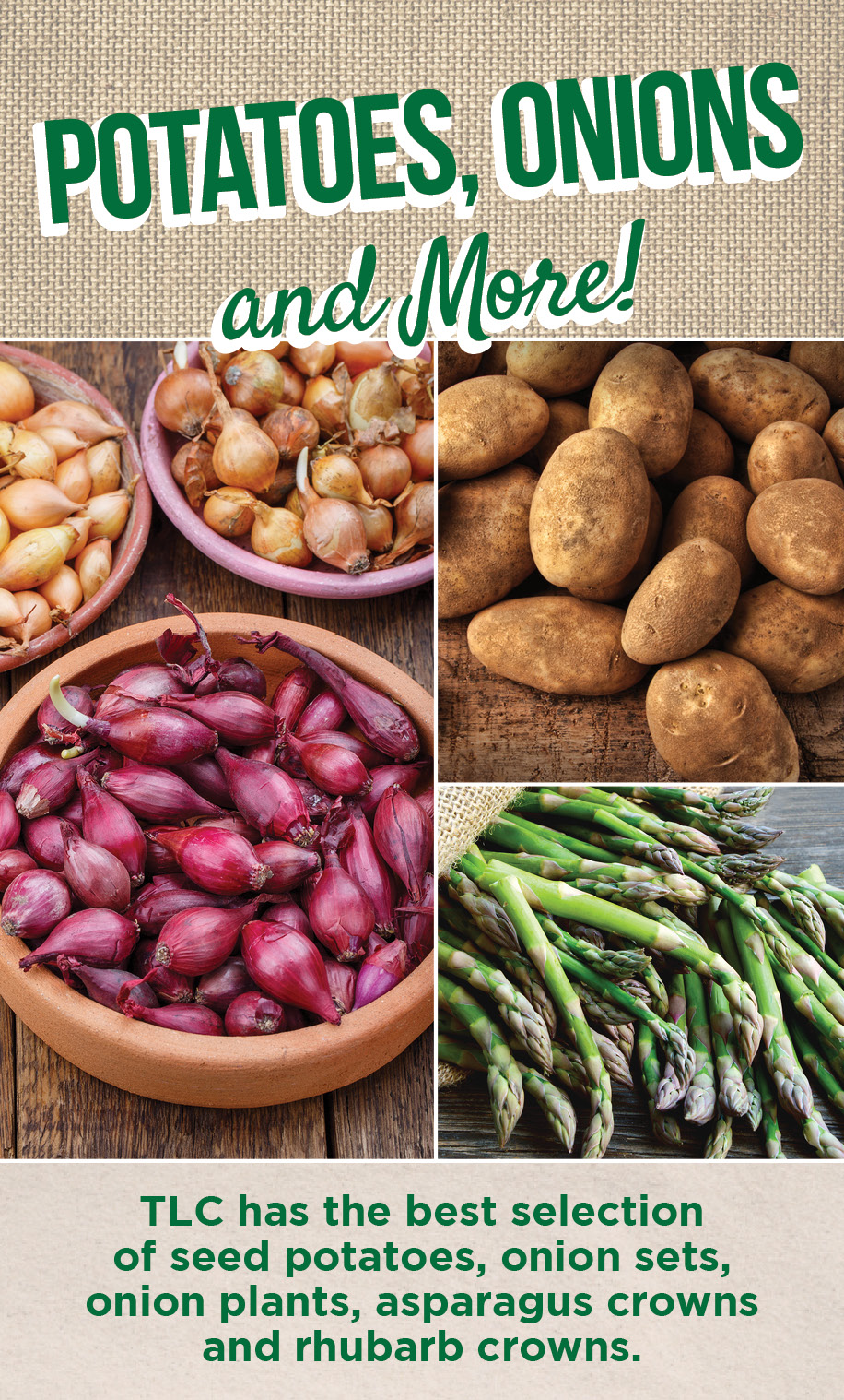 Potatoes, Onions and More | TLC Garden Centers
