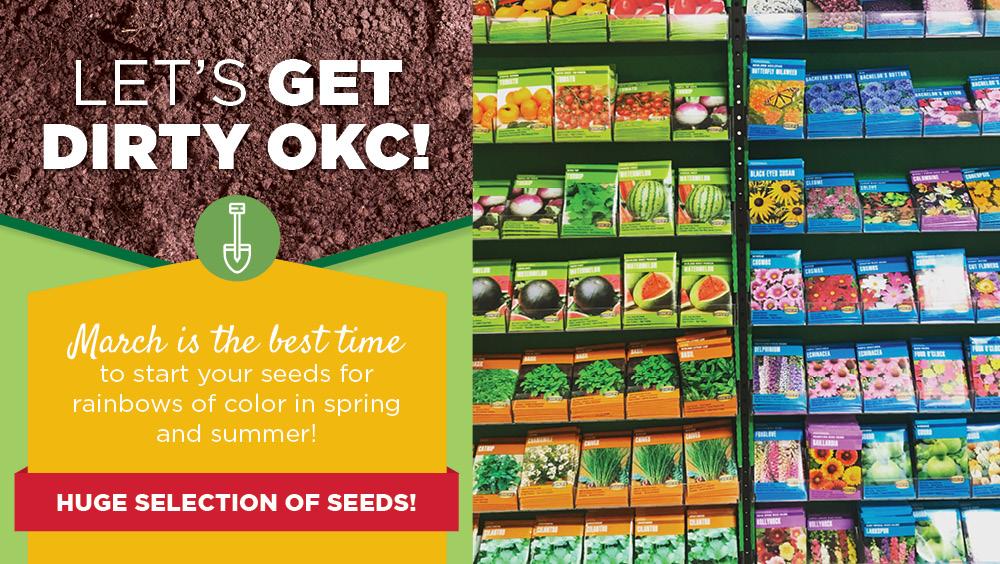 Seeds  | TLC Garden Centers