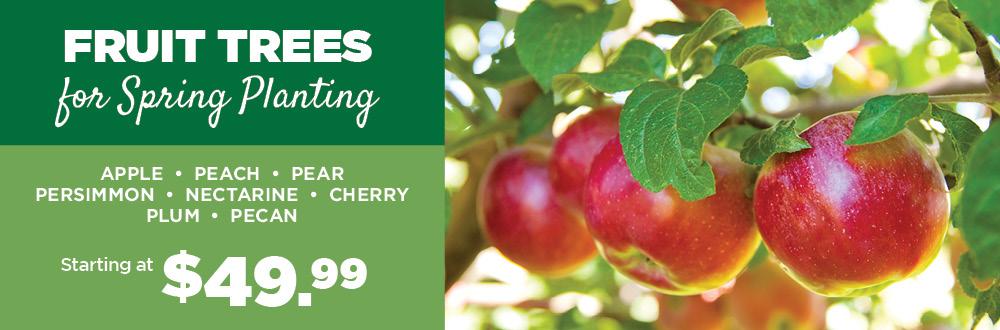 Fruit Trees | TLC Garden Centers