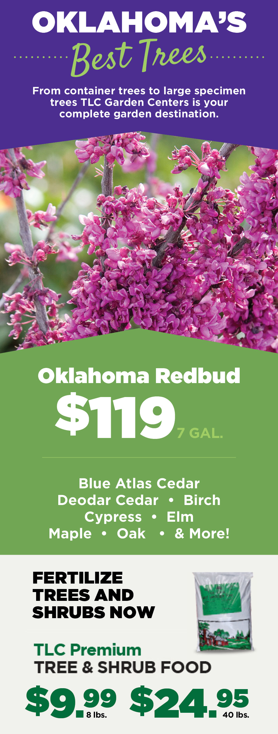 Oklahoma Best Trees | TLC Garden Centers