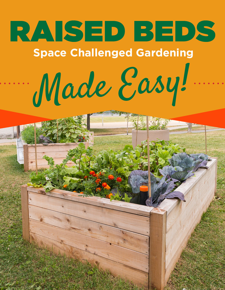 Raised Beds | TLC Garden Centers