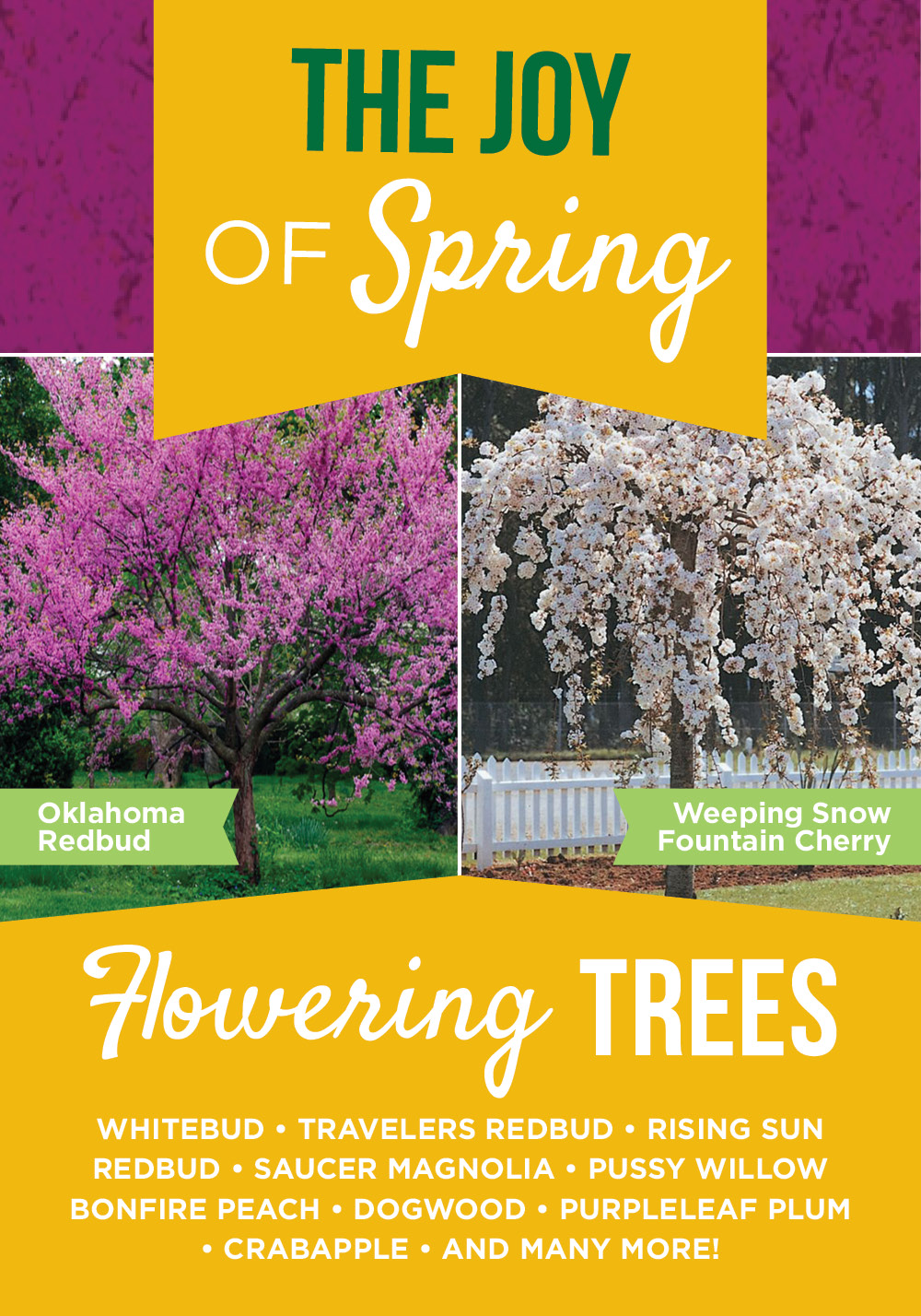 Flowering Trees | TLC Garden Centers