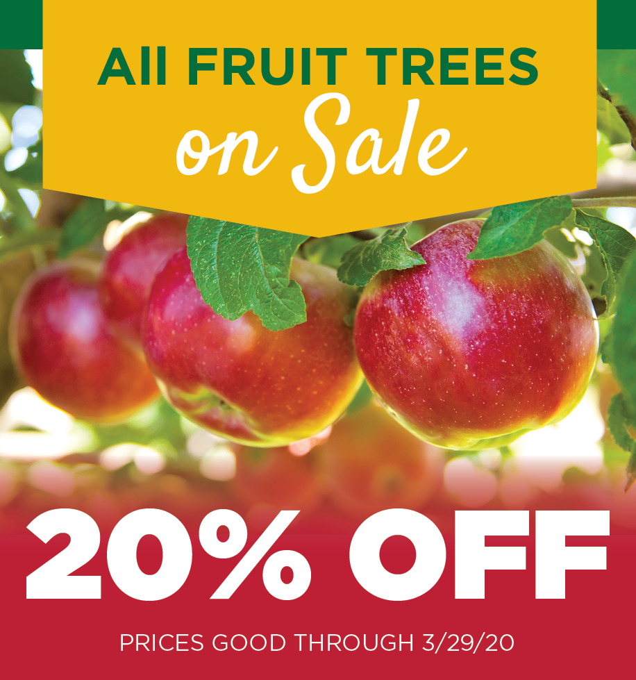 Fruit Tree Sale | TLC Garden Centers