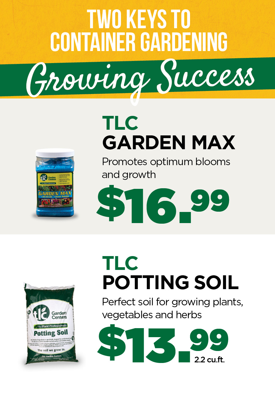 Amazing Trees | TLC Garden Centers