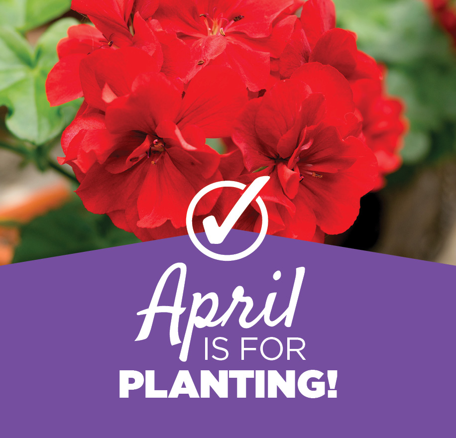 April Tips | TLC Garden Centers