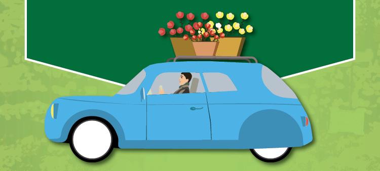 Curbside Pickup | TLC Garden Centers