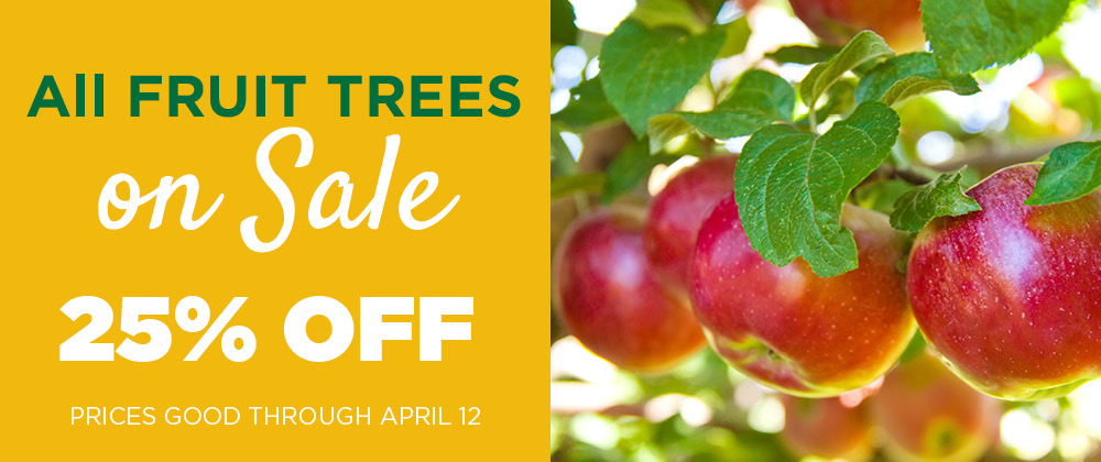 Fruit Tree Sale | TLC Garden Centers
