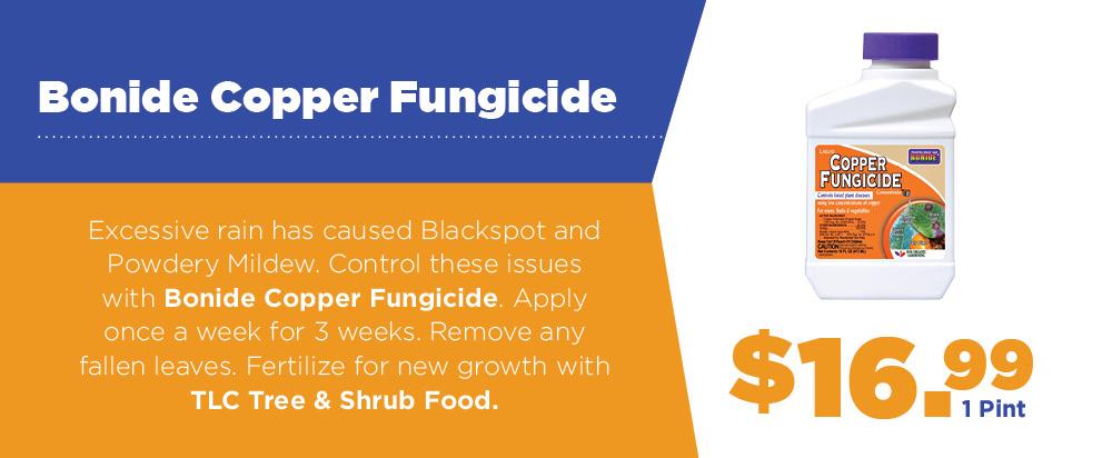 Bonide Copper Fungicide | TLC Garden Centers