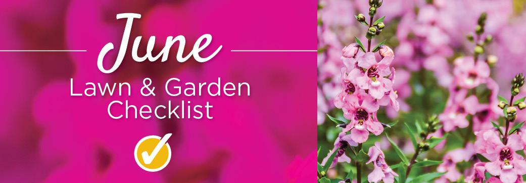 June | TLC Garden Centers