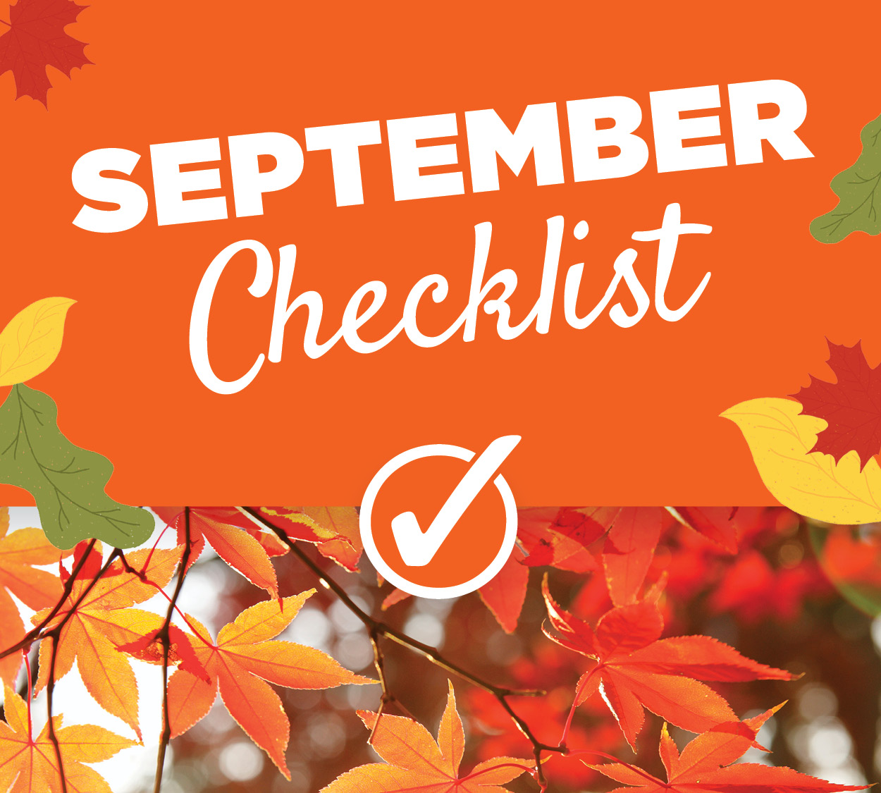 July Gardening Checklist | TLC Garden Center