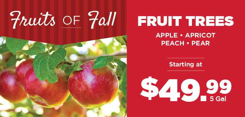 Fruits of Fall | TLC Garden Center