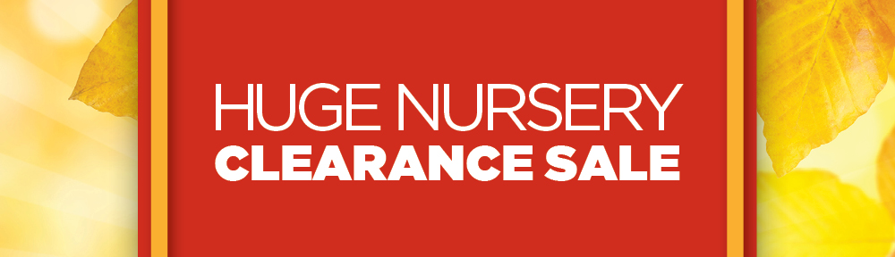 Nursery Clearance | TLC Garden Center
