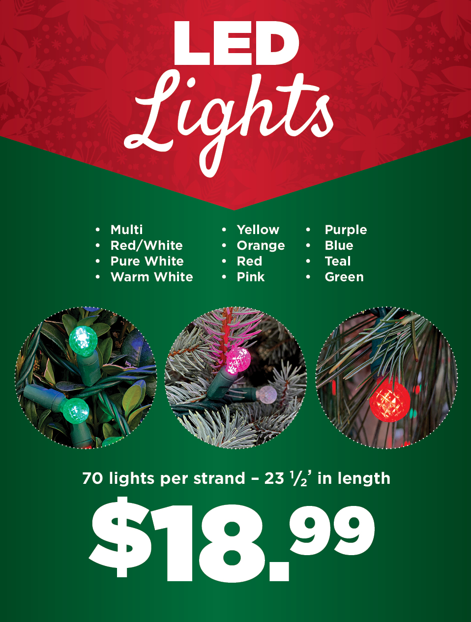 LED Lights | TLC Garden Centers