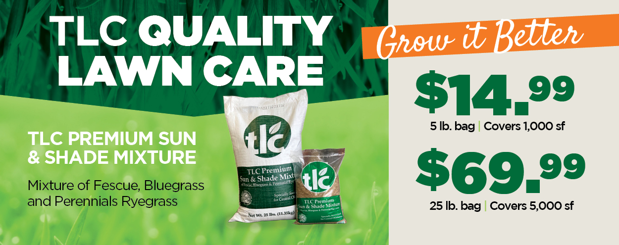 TLC Premium Sun and Shade Mixture | TLC Garden Centers