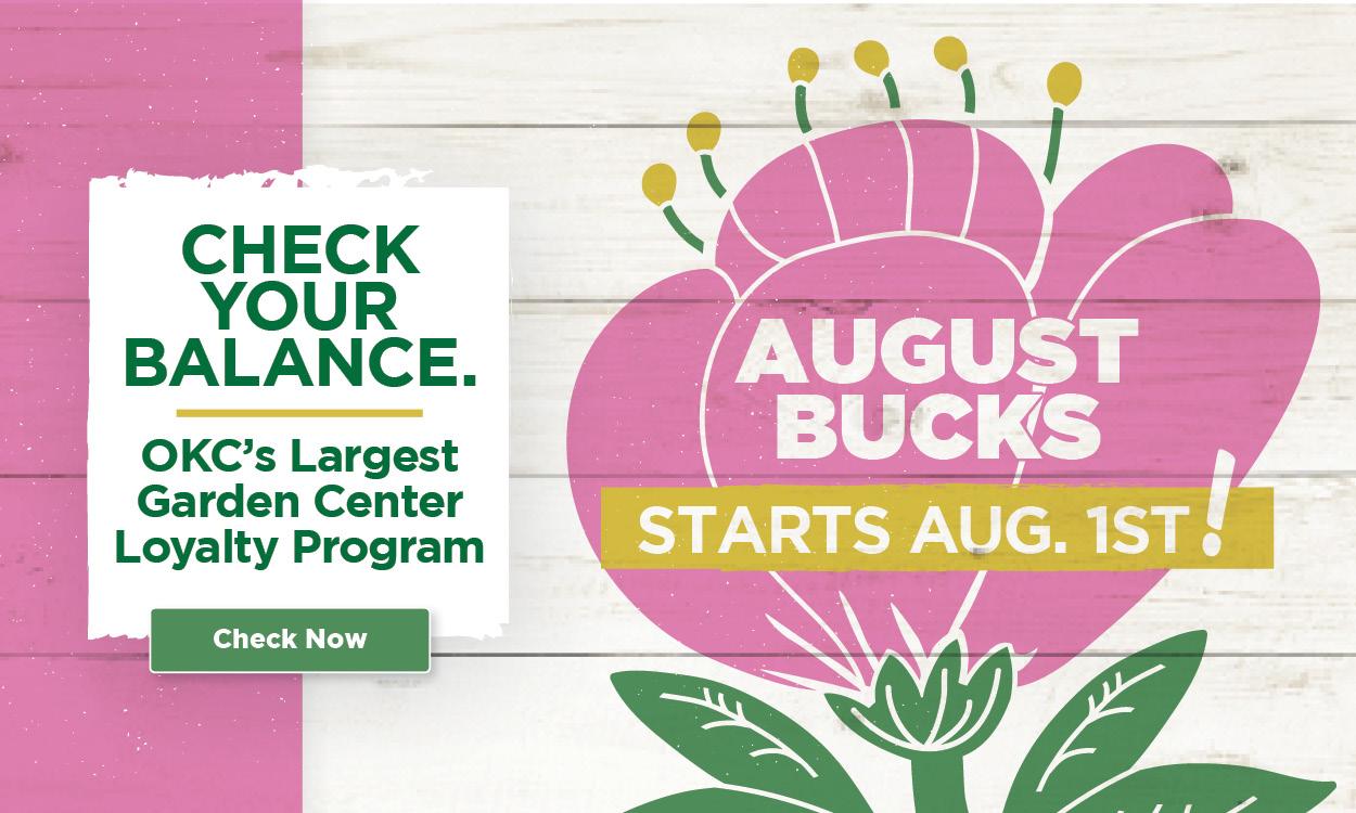 TLC Garden Centers August Bucks 2021