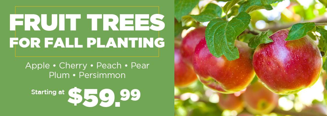 Fruit Trees   TLC Garden Centers